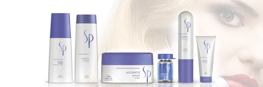 wella system professional hydrate banner