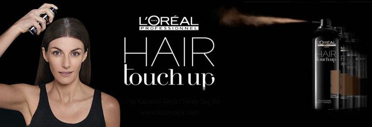 l'orèal Hair Touch Up